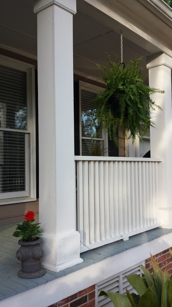 front porch ferns and flowers